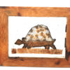 Handmade Paper Picture Tortoise